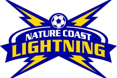 NATURE-COAST-LIGHTNING-4-BOLTS